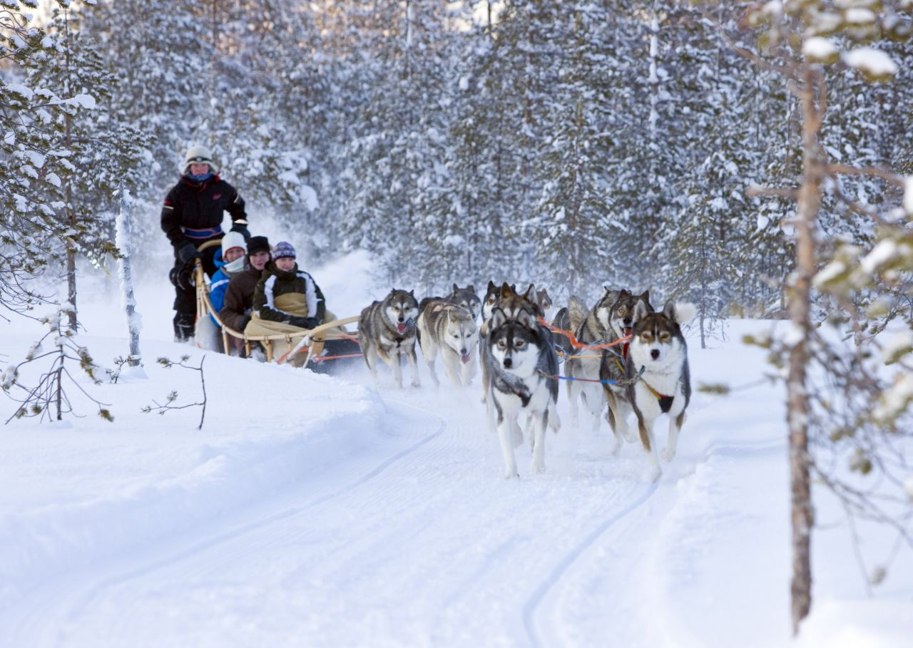 Winter Lapland Tour in Saariselka and Rovaniemi