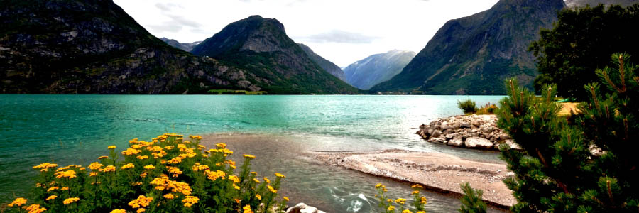 Majestic Fjords with Scandinavian Highlights